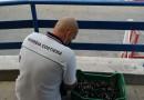 La Guardia Costiera di Torre del Greco ha sequestrato un banchetto illegale di mitili