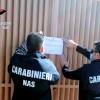carabinieri-del-nas
