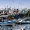 fermo-pesca-1132x670