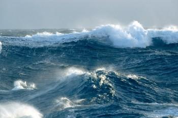 oceani-cose-che-non-sai-01