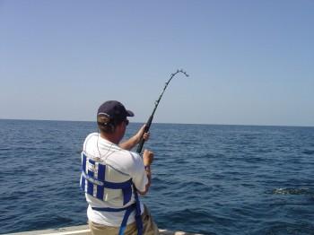 pesca-a-traina