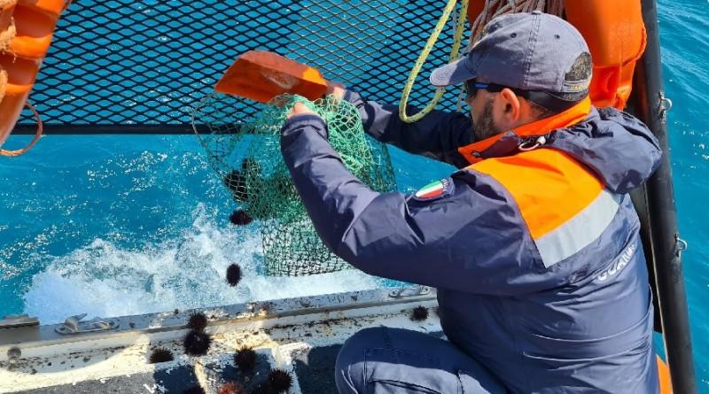 pesca-illegale-di-ricci