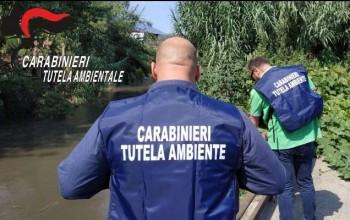 tutela-ambientale-carabinieri