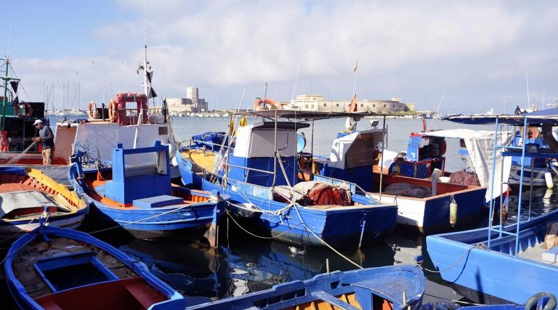 Al via l'avviso pubblico per la selezione di 120 pescatori professionali da coinvolgere ed  avviare ad un ciclo di incontri informativi online sui temi della pesca e della Blue  Economy