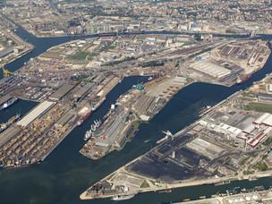 veneiza porto